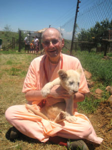 GRS with Lion Cub in SA 12.2009
